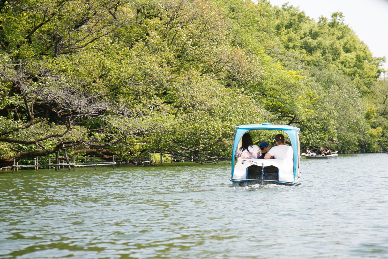 サイクルボートは大人2人・子ども1人の3人乗りですが、スワンボートよりも100円安く乗ることができます。
