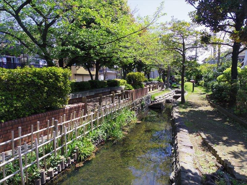 自然豊かな「五反野親水緑道」