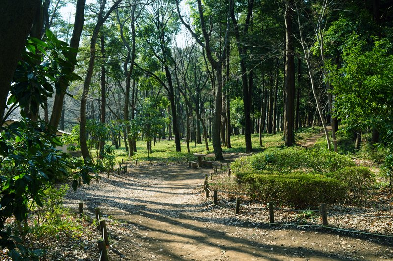 「グランベリーモール」と合わせて整備される「鶴間公園」