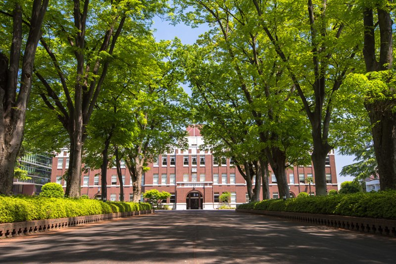 シンボルの欅並木と大正時代に建てられた「成蹊学園本館」