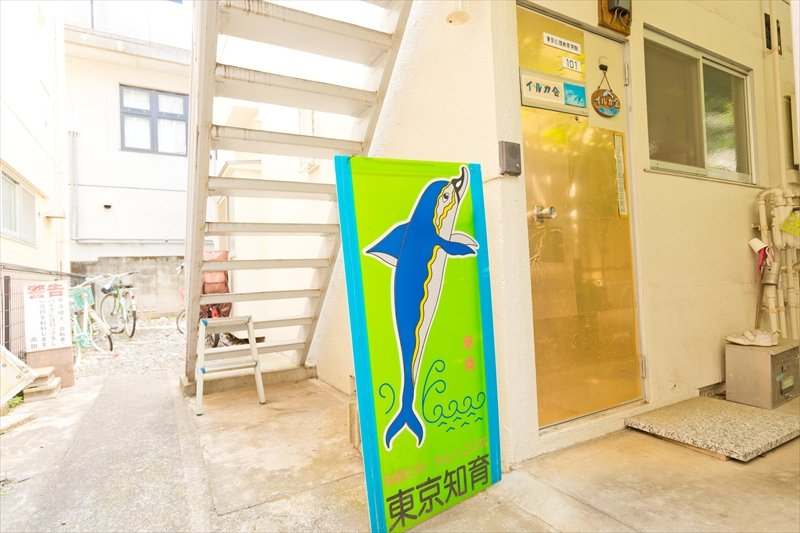 イルカ会 東京知育研究所 吉祥寺教室