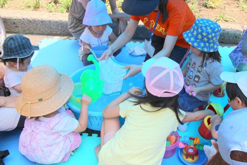 2・3歳児が水遊びを楽しむ様子