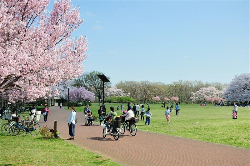 多くの人が思い思いの時間を過ごす「東村山中央公園」