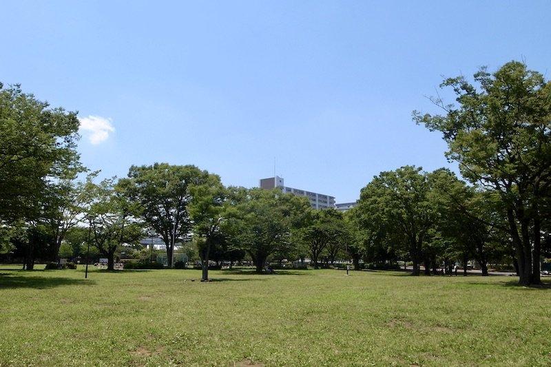 「新小岩公園」の芝生広場