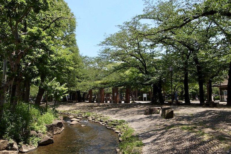 「小松川境川親水公園」の様子